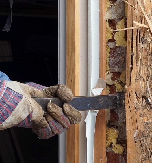 Termite extermination in New Market, MD