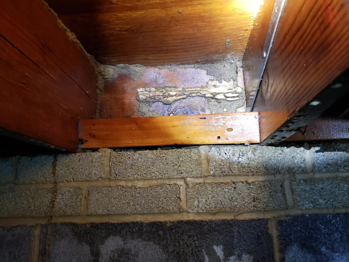 Termite damage found in a townhouse